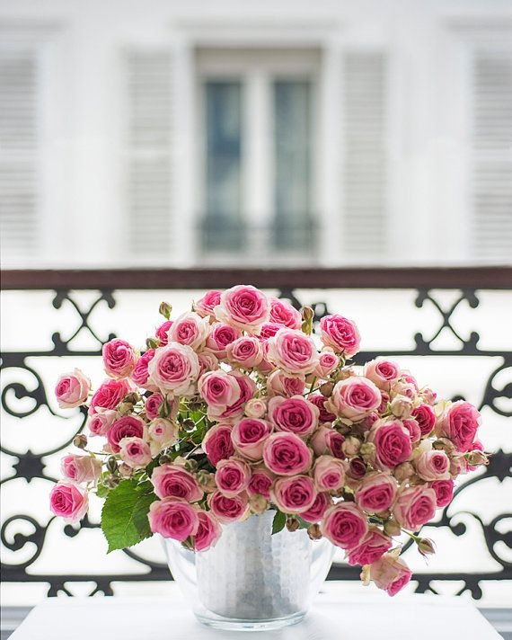 Great romantic photos Paris. / flowers.  Very feminine.  Could be stunning.   Paris Photograph  Roses on a Paris Balcony by GeorgiannaLane, $30.00