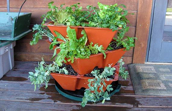 GrowPots - Easy to Grow Systems