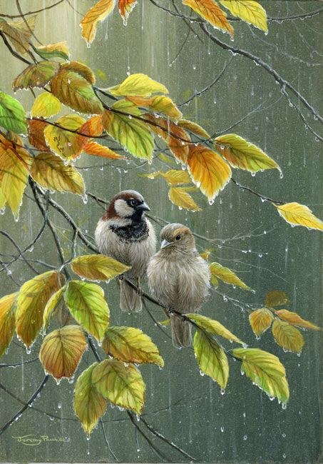 Artist: Jeremy Paul - Title: Sparrows in the Rain -  Materials/techniques used: acrylics - Inspires, why? The artist has managed to create a perfect background of raindrops while managing to keep the focus on the two sparrows in the middle of the piece