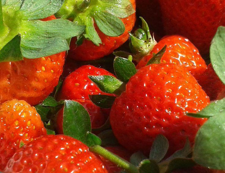 Fragole buone e succose nate nell'orto di Seminala. Splendidi cuori rossi.