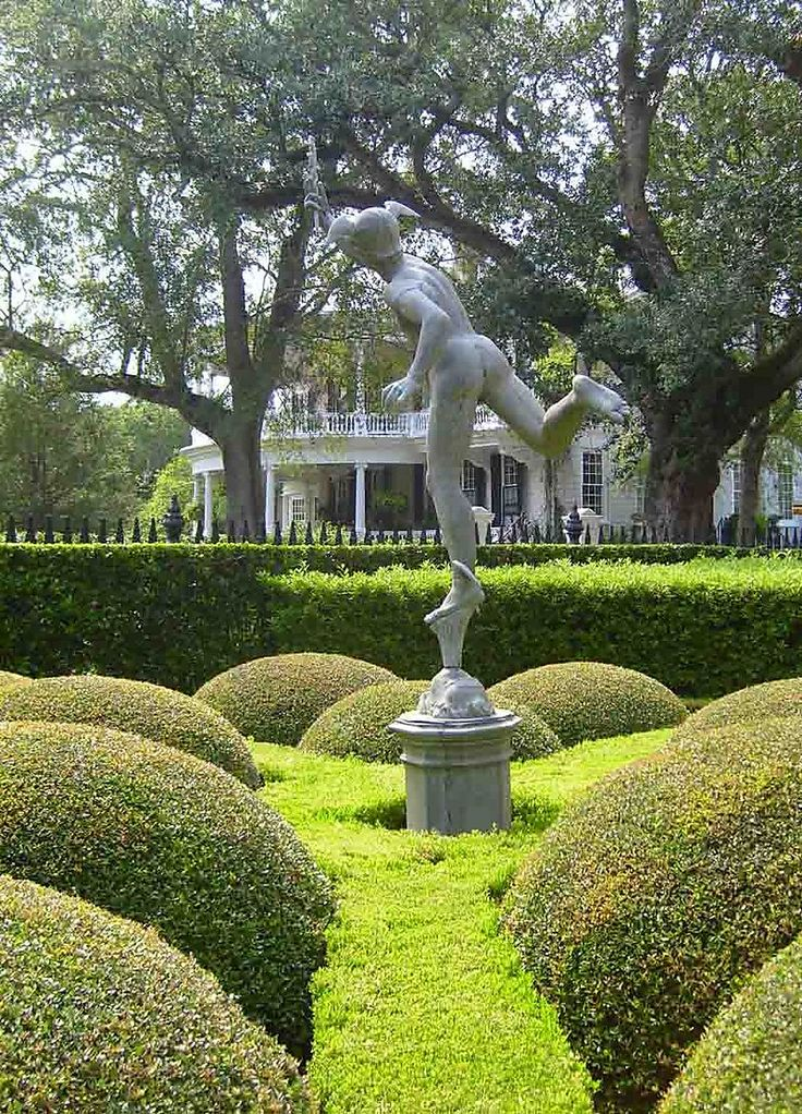 Pin By Marcia Willi On Shrubbery/Landscaping