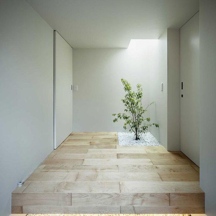 玄関ホール 外から中に入ったらまた外、みたいな空間です。植栽の上はトップライトみたいに見える照明器具です。 写真:福澤昭嘉 #建築#デザイン#architecture #design #建築家住宅 #注文住宅#玄関#ミニマリスト#フローリング#白#インテリア#interior#ミニマム#minimum