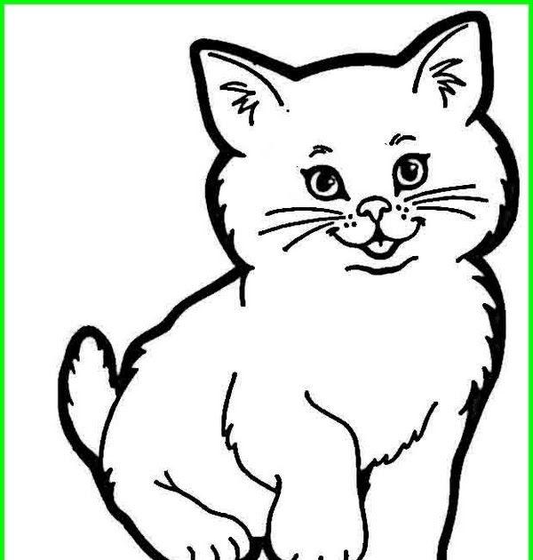 Gambar Kucing Yang Mudah Kartun Gambar Kelinci Gambar Kucing Lucu