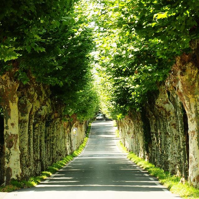 """""""Croisement"""" à l'entrée du village de Sare au Pays Basque by JDAMI, via Flickr"""