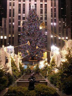 https://flic.kr/s/aHsknJg4aC | A New Christmas | By: Jacqueline Michelle Brown Ramirez-Martinez