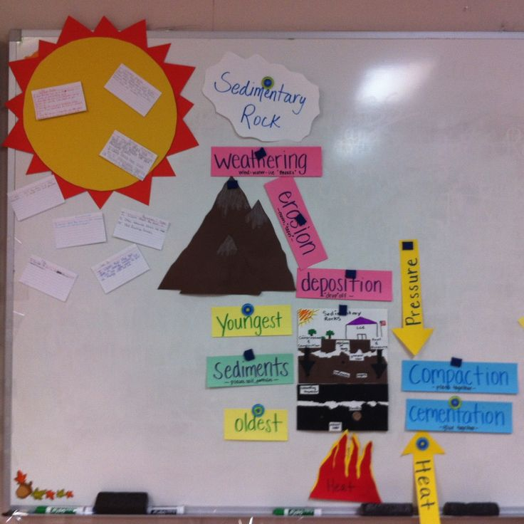 Science TEKS 5.7A Explore processes that led to the formation of sedimentary rocks and fossil fuels. (SWISD)