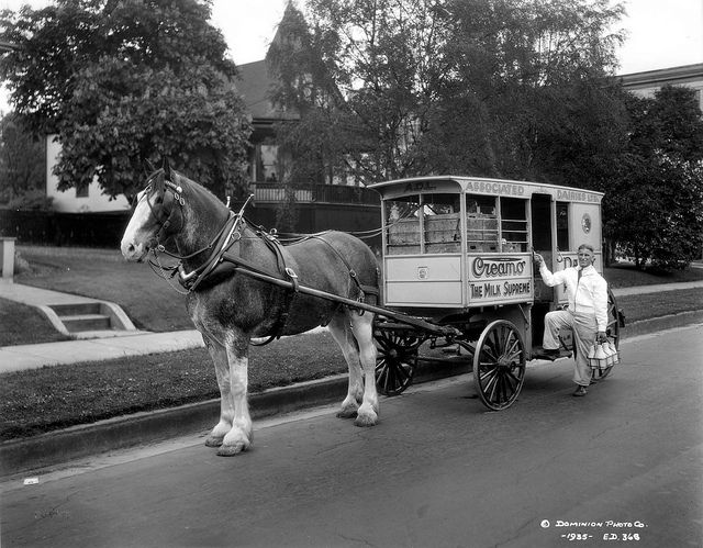 Associated Dairies milk delivery man with horse and wagon, Vancouver, 1935.