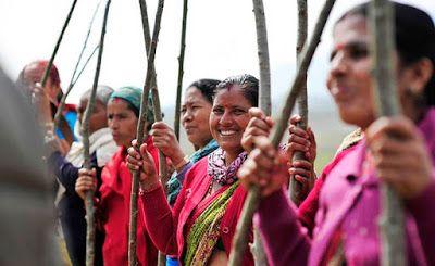 Belle Notizie: India: in un solo giorno piantati 49,3 milioni di ...