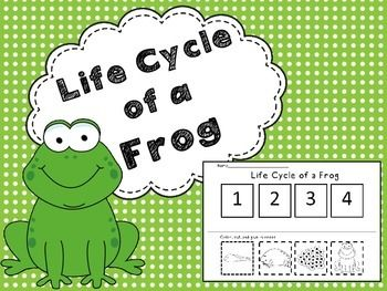 A worksheet to help children understand their learning of the Frog's life cycle.