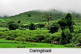 Daringibadi, Kandhmal district, Odisha. Explore the Hill station in this page. #hillstation #travel #holiday #winter