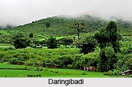 Daringibadi, Kandhmal district, Odisha. Explore the Hill station in this page. #hillstation #travel #holiday #winter