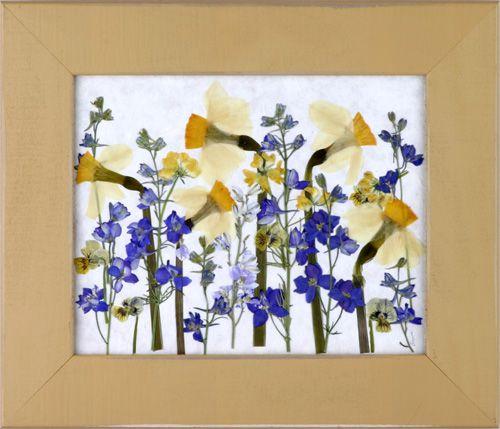 Ideas: Flower Pictures, Press Flower Mi, Art Press Flower, Flower ...