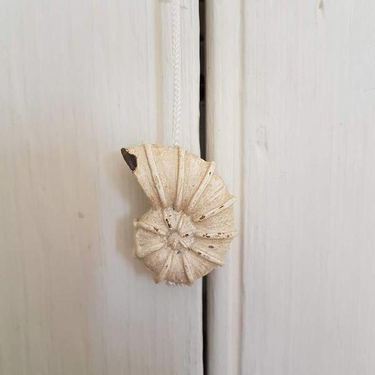 seashell bathroom lighting fixtures. nautical seashell bathroom or toilet cream distressed light pull via bluelake interiors. click on the seashell bathroom lighting fixtures r