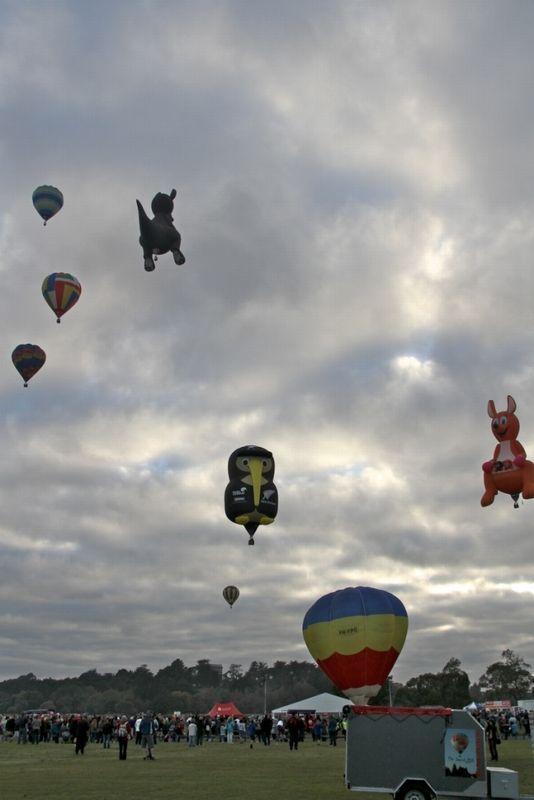 Balloons over Waikato, NZ