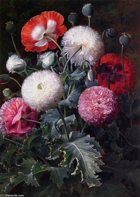 Johan Laurentz Jensen >> Still Life with Poppies and Other Flowers  |  (, artwork, reproduction, copy, painting).