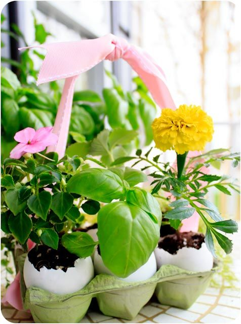 47 best easter flowers plants images on pinterest easter adorable gift idea would be cute to plant herbs in and some flowers for negle Choice Image