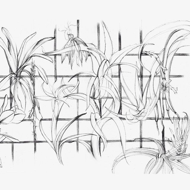 OCT | Grid | development sketches by@shelley_steer