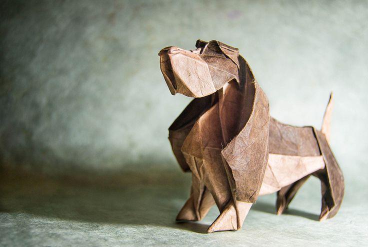 Gonzalo Garcia Calvo è un talentuoso e abile maestro nel ripiegare piccoli pezzi di carta, dando vita a splendide forme animali.