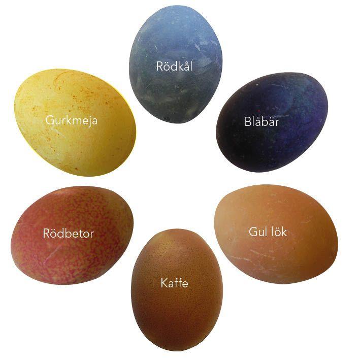 Öppna kylen och du har naturliga färgämnen som gör äggen kulörta på påskbordet. Fram med lökskal, kaffe och gurkmeja och blanda de färger du tycker om. Av Åsa Hagberg Oavsett om man är allergisk eller bara tycker det känns härligt att äta utan konstgjorda tillsatser finns det massor av naturliga färger att välja emellan.…