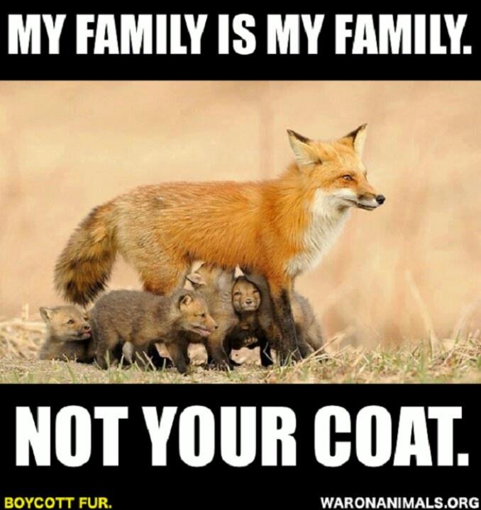 Famous Animal Rights Quotes: Anti Fur Quotes. QuotesGram