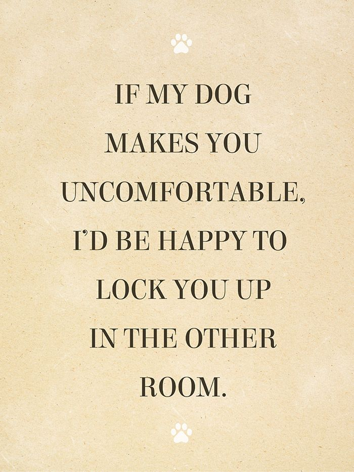 Why is it that house guests forget this one simple fact: the dog lives here, you don't! This bold and quirky wall poster will remind your friends that dogs are family! Print reads,