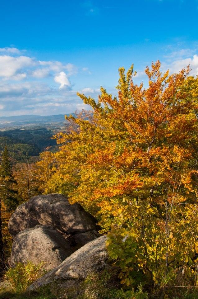 Autumn in Giant Mountains