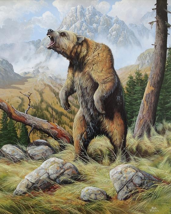 Grizzly - Roberto Bianchi