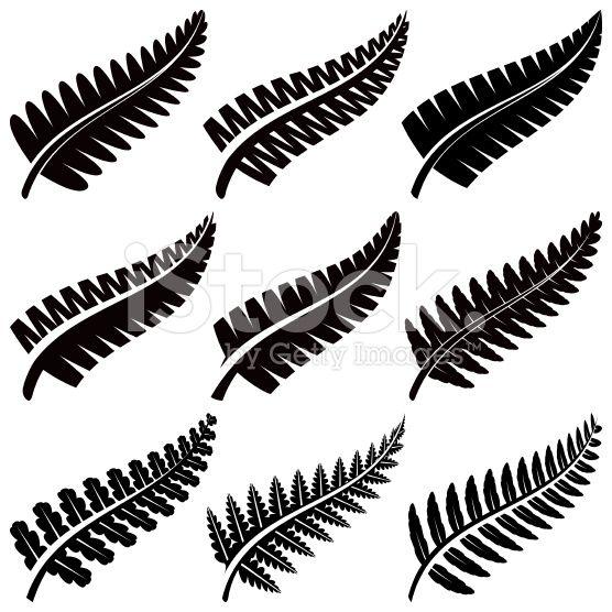 Silver Ferns royalty-free stock vector art