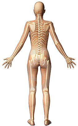 All you need to know about sciatica pain symptoms, causes, diagnosis and treatment.