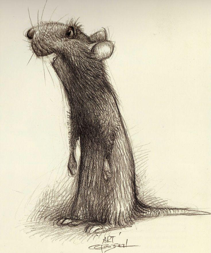 Character Design Ratatouille : Ratatouille the art of disney animation drawings