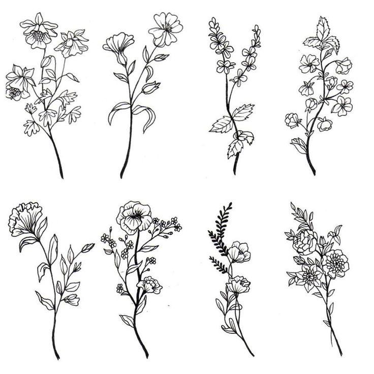 Wildflower Line Drawing : Las mejores ideas sobre tatuajes de muñeca flores en