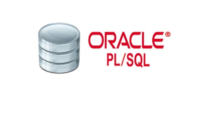PT. #Netsolutions Infonet #PL/SQL Developer