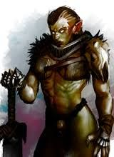 Image result for female orc paladin