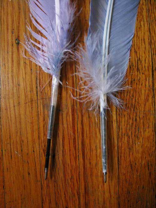 "a homemade ""quill"" pen, using hand-dyed feathers...bring history to life!"