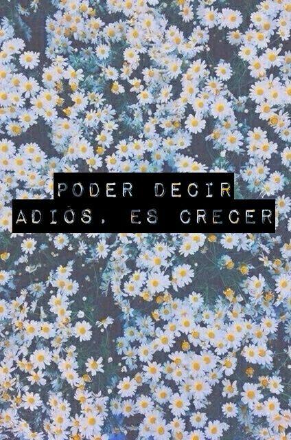 #cerati #GustavoCerati #adios