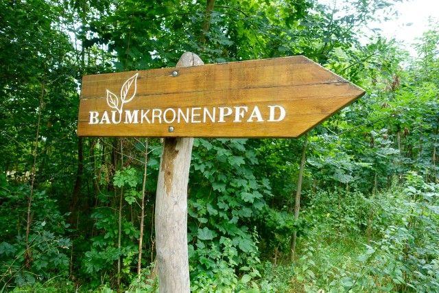 Baumkronenpfad in Thüringen