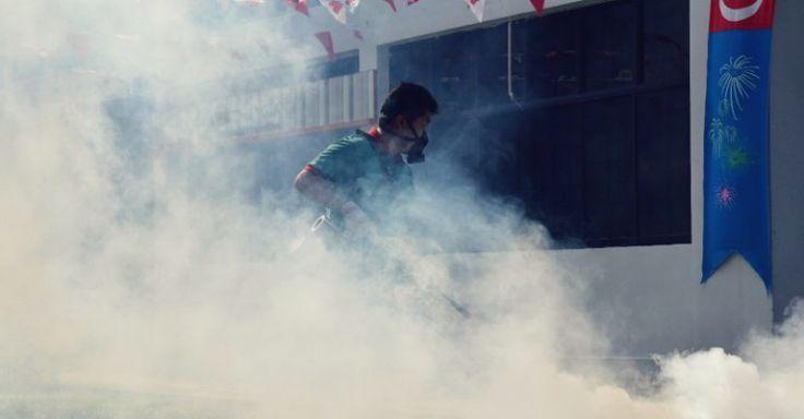 mosquito-fogging