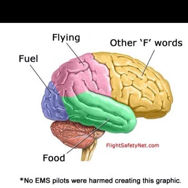 An EMS Pilot's Brain LOL
