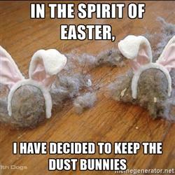 In the spirit of easter, i have decided to keep the dust bunnies – Easter Meme