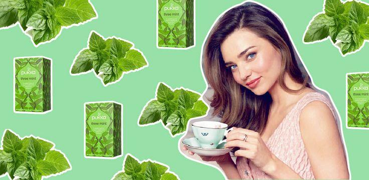 Jedna mięta dziennie zamiast zwykłej herbaty posłuzy Waszej cerze