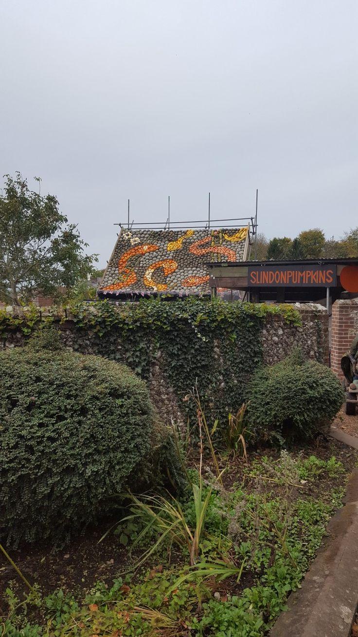 Slindon pumpkins 2017 Snakes and Ladders