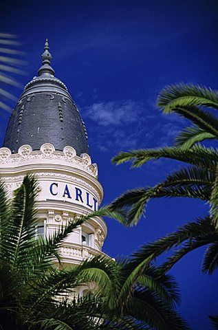 Palm trees and the Carlton Hotel, Cannes, Alpes Maritimes, Provence, French Riviera, France, Europe