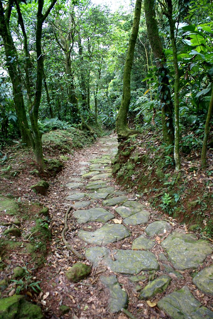Parque Estadual Serra Do Mar Serra Do Mar State Park