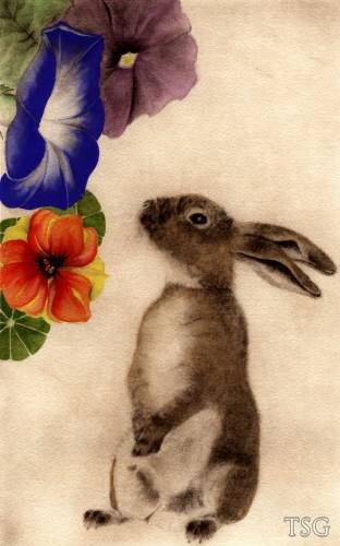 C.C. Barton.. I like the rabbit but not sure about the flowers
