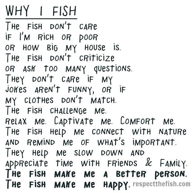 "161 Likes, 34 Comments - Respect the Fish (@respectthefish) on Instagram: ""Why I #fish."""