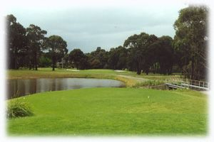 http://crazygolfdeals.com.au/deal/victoria--2/18-holes-in-a-cart-for-2-players-with-drinks-at-moe-golf-course?affiliate_code=twitter&utm_source=twitter&utm_medium=cpc&utm_campaign=twitter  18 holes for Two at Latrobe Valley's finest golfing venue Moe Golf Course. Enjoy a shared motorised cart & a beer or wine each after your game. Normally $92, This offer $42 #LatrobeValley #Victoria #Australia #Golf