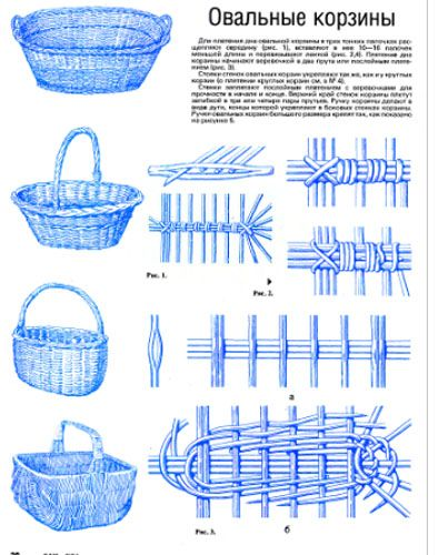 Good ideas on making plant protectors or cloches out of willow or kudzu