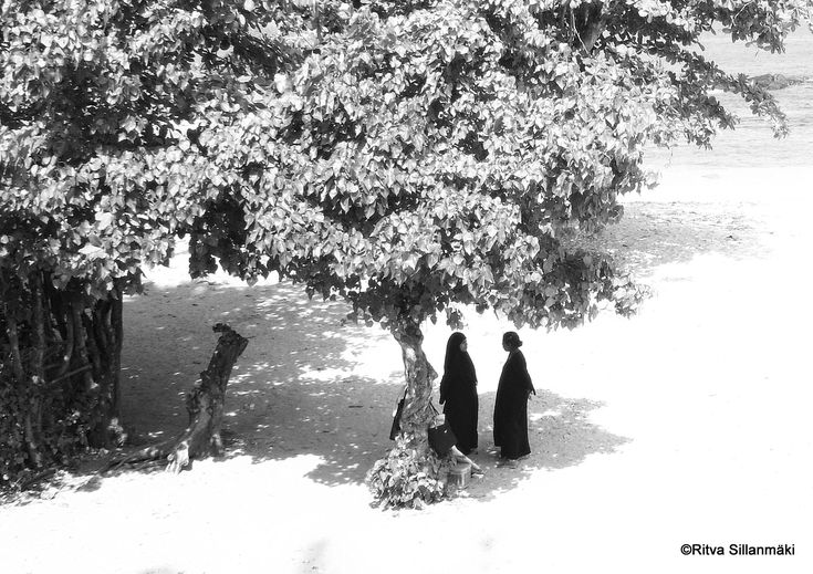 The Weekend in Black and White - conversation under the tree