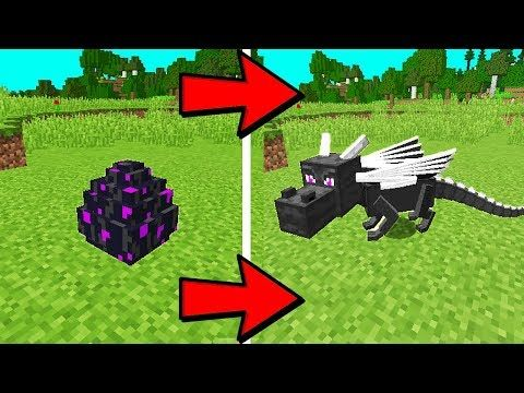 how to hatch a dragon egg on minecraft