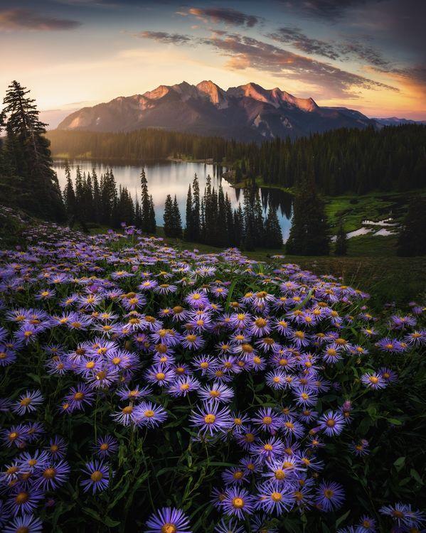 Daily Dozen Photos National Geographic Your Shot Mountain Landscape Photography Landscape Photography Nature Photography